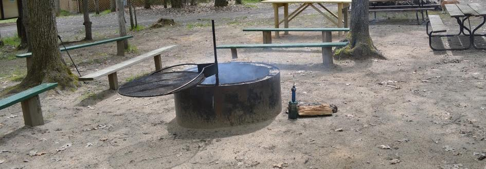 A circular fire pit surrounded by benches and trees.