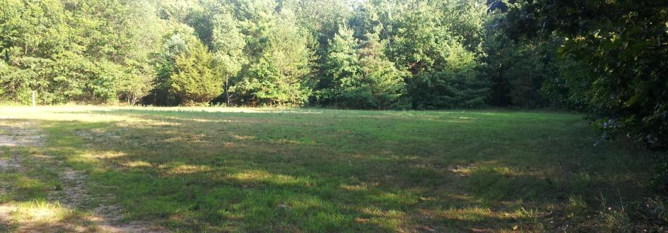 An open, grassy field surrounded by trees.