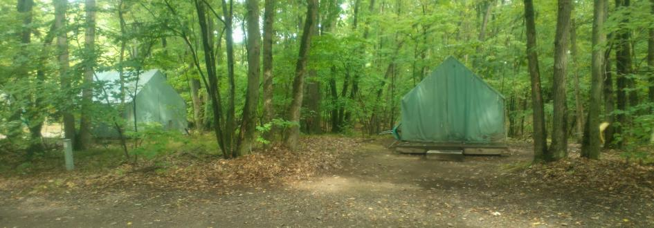 Two large green tents on platforms at the White Pine tent site surrounded by trees.
